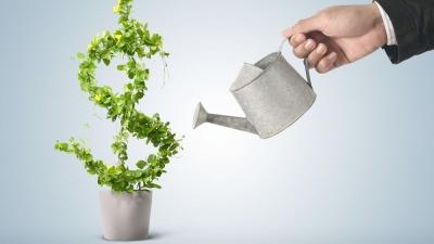 Holding Company and Subsidiary Company relationship in India
