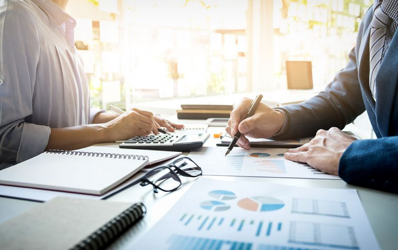 What is the Statutory Audit for Companies in India?