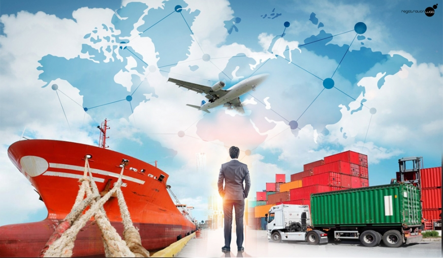 How to get Import Export Code Sole proprietorship