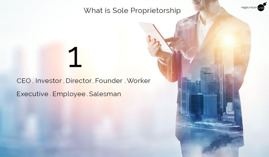 What is Sole Proprietorship?