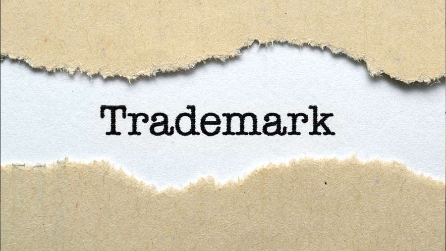 Trademark search is not equal to Google search
