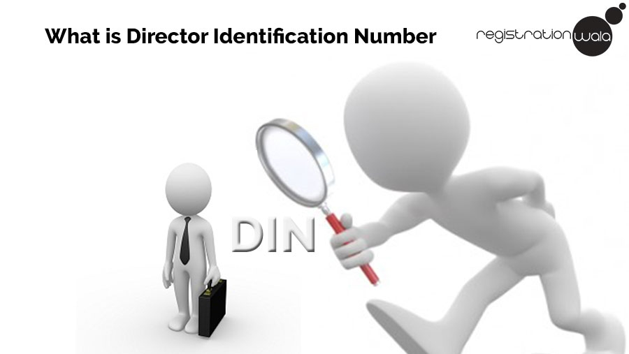 What is Director Identification Number?