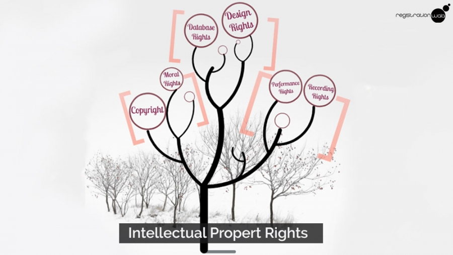 10 things you should know about the new intellectual property rights policy in India